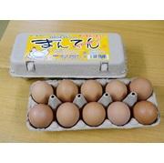 まんてん生卵 20個 ご自宅用 産地直送でお届け 【こだわりの配合飼料ならではの濃厚卵】