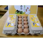 まんてん生卵 30個 ご贈答用【こだわりの配合飼料ならではの濃厚卵】 産地直送でお届け