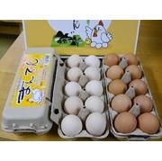 まんてん生卵20個 きらめき美人10個【こだわりの配合飼料満喫セット】  産地直送でお届け