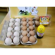 まんてん生卵 きらめき美人生卵 温泉たまご 生卵専用醤油たまごにイイ醤 産地直送でお届け